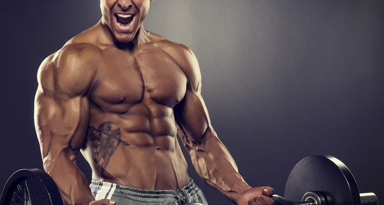 Where Will bodybuilding .co.uk Be 6 Months From Now?